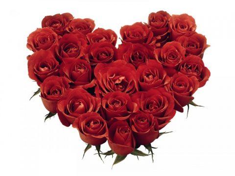 hearts-roses-768x576